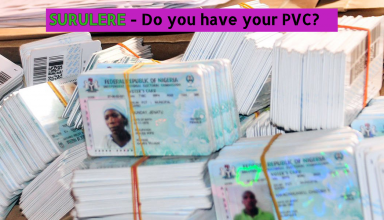 Bundle of PVC cards for election time